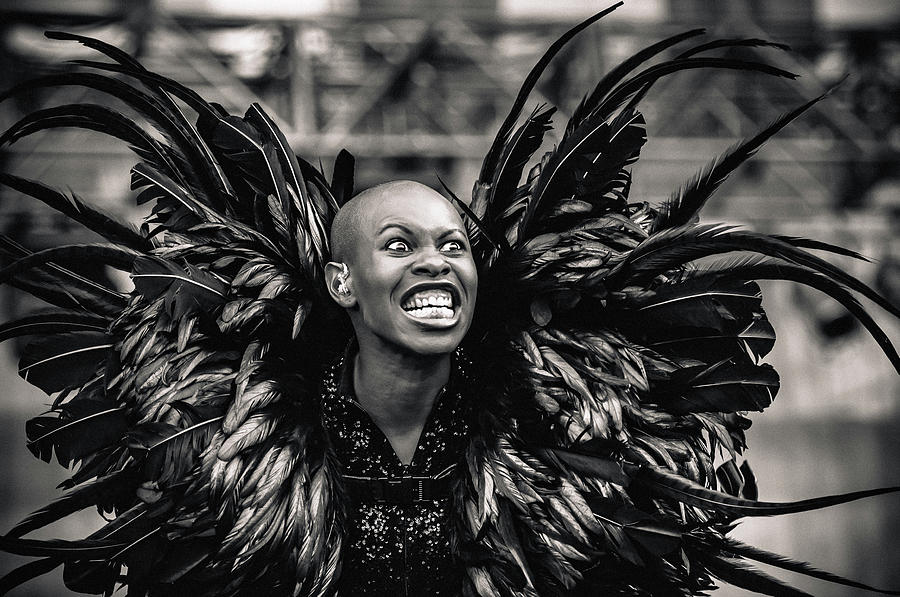 Skunk Photograph - Skunk Anansie by