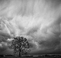 Cloud Photograph - Sky Dance by Bob St Cyr
