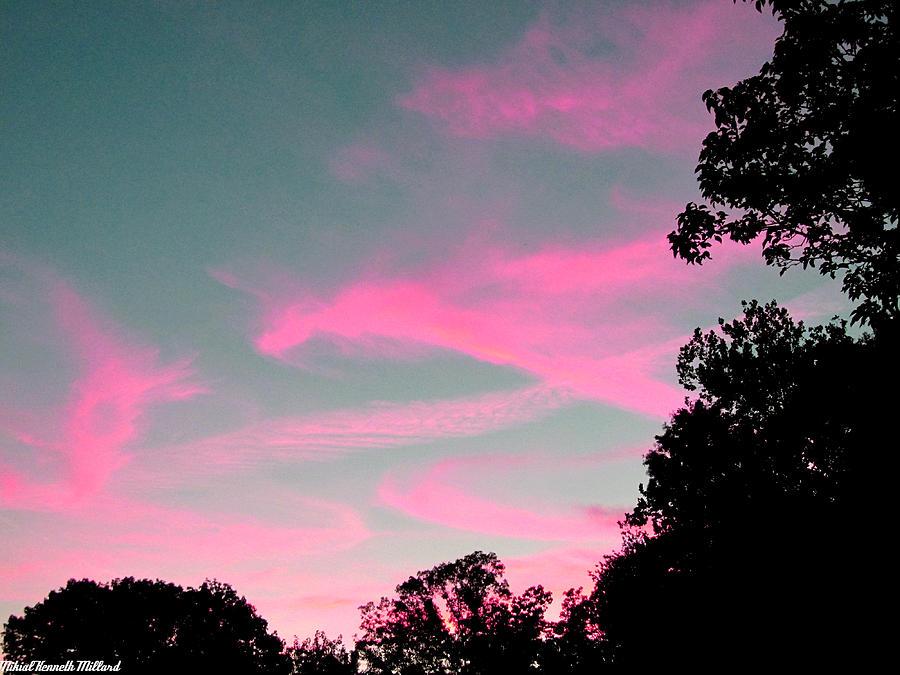 Tree Photograph - Sky Glow by Aeabia A
