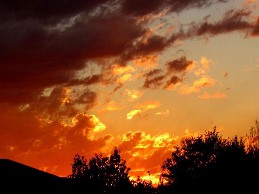 Sky On Fire. Photograph by Joyce Woodhouse