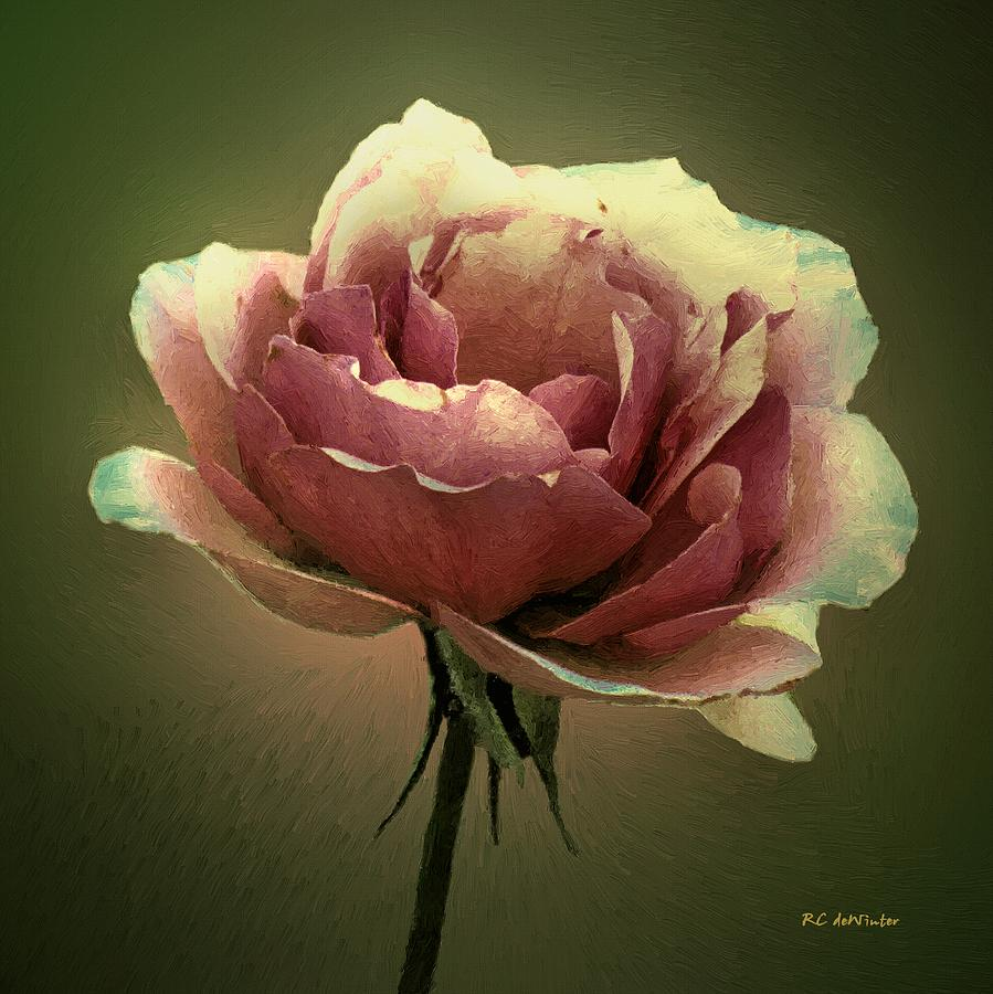 Rose Painting - Skyblue Pink by RC deWinter
