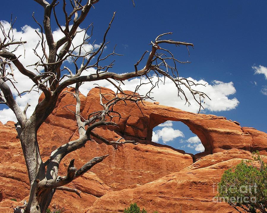 Utah Photograph - Skyline Arch 2 by Mel Steinhauer