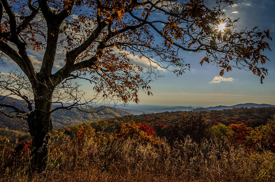 Fall Photograph - Skyline Drive by Pat Scanlon