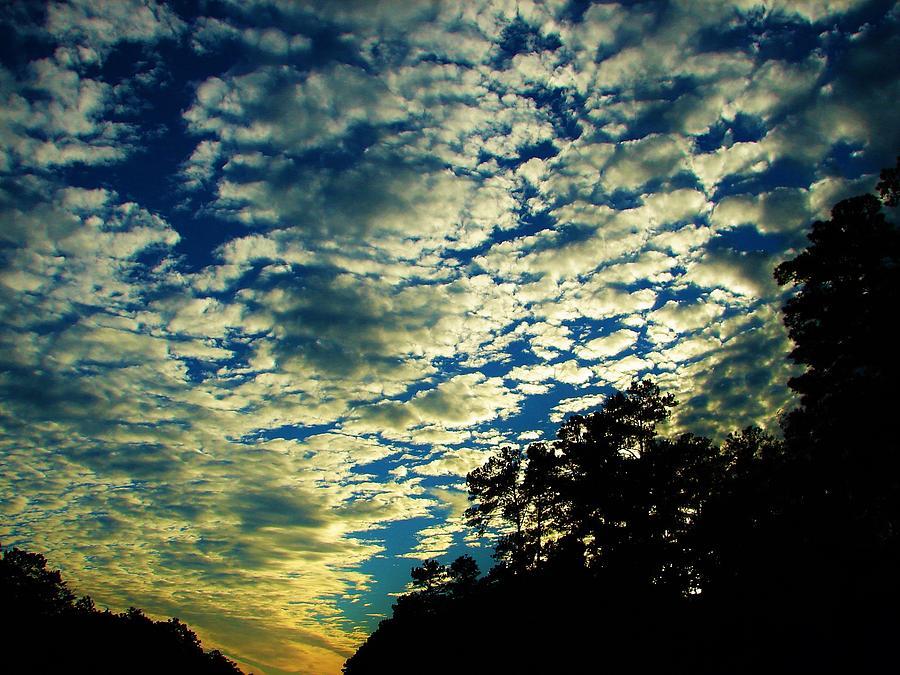 Sky Photograph - Skyward by Ella Char