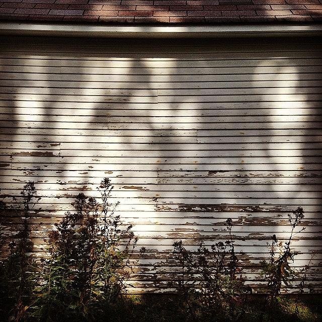 Slat Photograph - Slats And Shadows by Frank J Casella