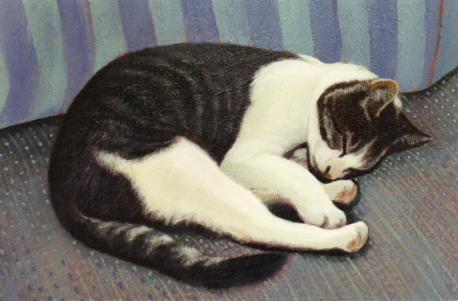 Cat Painting - Sleeping Cat by Blue Sky