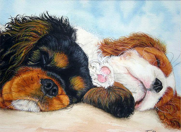 Dogs Painting - Sleeping Cavalier Puppies by Toulla Hadjigeorgiou