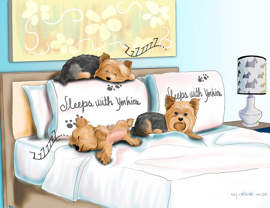 Sleeps Mixed Media - Sleeps With Yorkies by Catia Cho