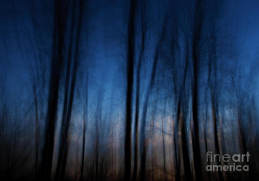 Nikon Photograph - Sleepwalking... by Nina Stavlund