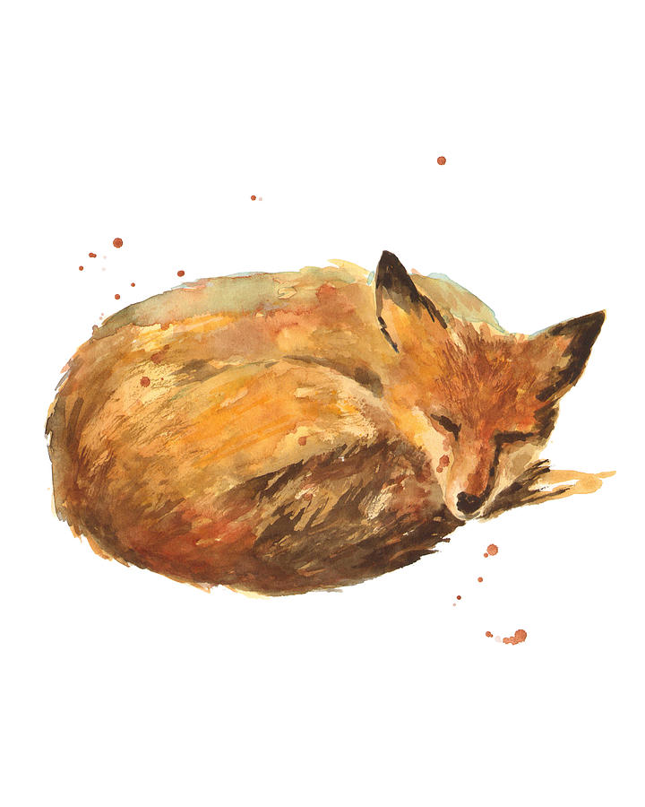 Fox Painting - Sleepyhead by Alison Fennell