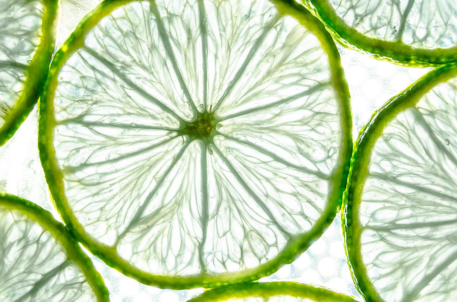 Passion Photograph - Slices Lime. by Slavica Koceva