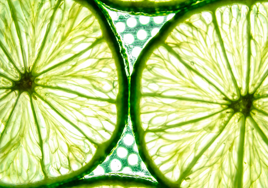 Passion Photograph - Slices Of Lemon. by Slavica Koceva