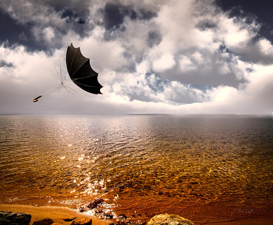 Umbrella Photograph - Slight Chance Of A Breeze by Bob Orsillo