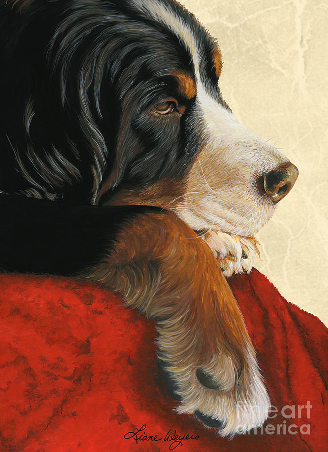 Bernese Mountain Dog Painting - Slumber by Liane Weyers