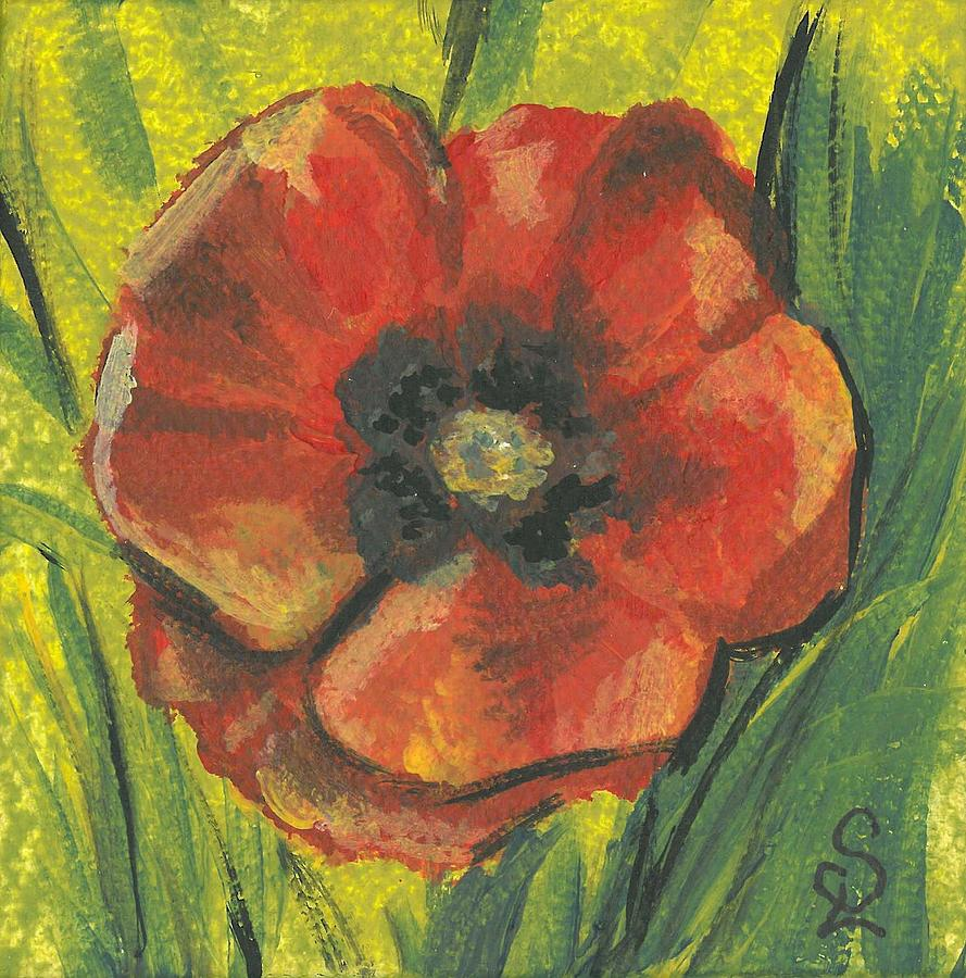 Small Poppy Flower Painting By Sarah Lowe