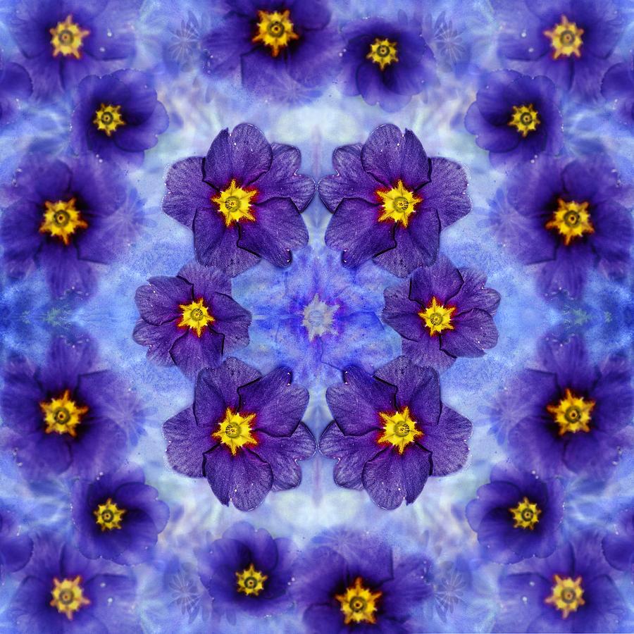 Small Purple Flowers Dark Photograph By Belinda Greb
