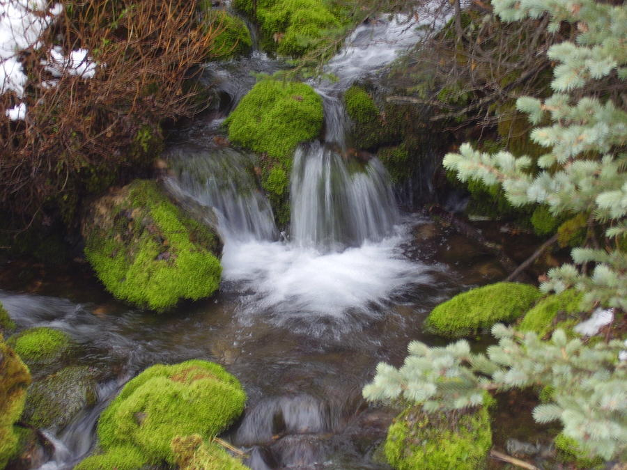Landscape Photograph - Small Waterfalls by Yvette Pichette