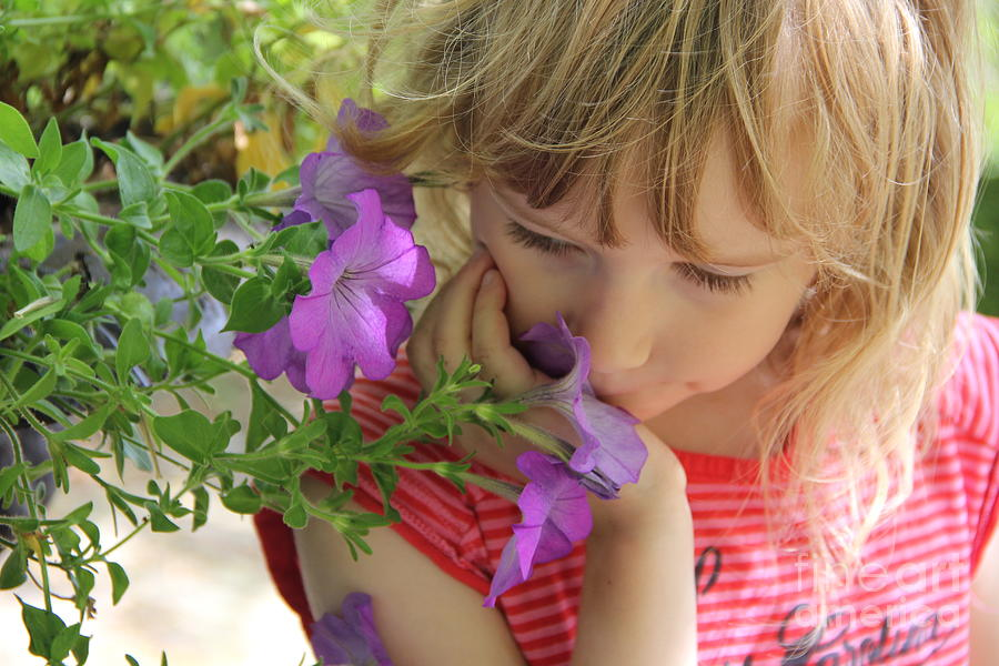 Smell The Summer Photograph By Jackie Mestrom
