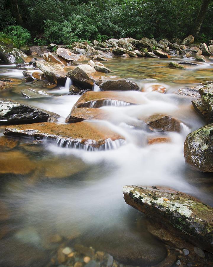 Alpine Photograph - Smokey Mountain Creek by Adam Romanowicz