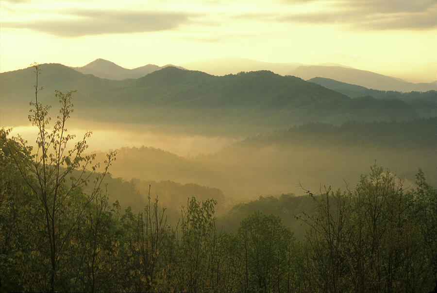 National Park Photograph - Smoky Mountain Foggy Sunrise by John Burk