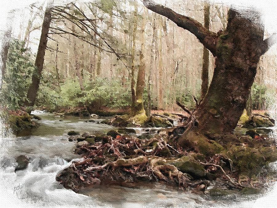 Chimney Painting - Smoky Mountain Forked Stream by Philip White