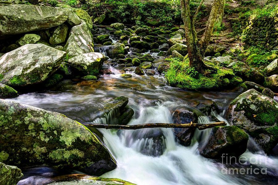 Smoky Mountains Photograph - Smoky Mountain Stream 4 by Mel Steinhauer