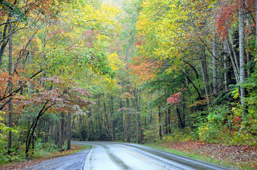 Great Smoky Mountains National Park Photograph - Smoky Mountains Scenic Drive by Mary Anne Baker