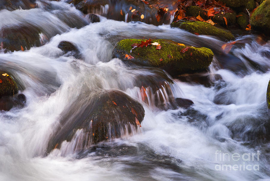 Stream Photograph - Smoky Mtn Stream - 429 by Paul W Faust -  Impressions of Light