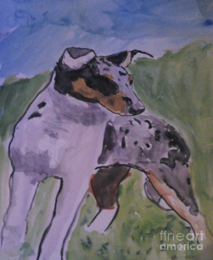 Smooth Collie Blue Merle Drawing by Patries Van dokkum