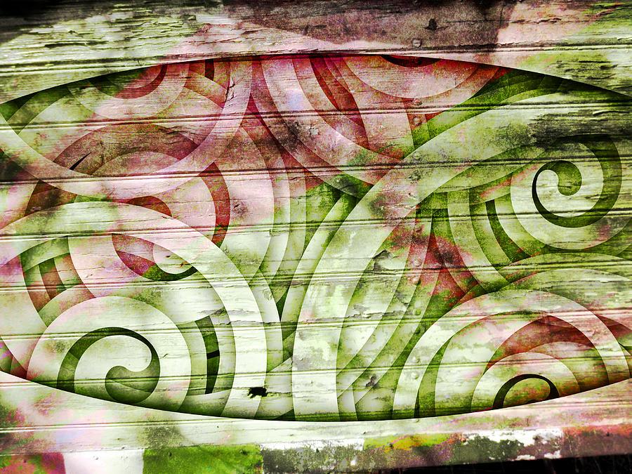 Abstract Photograph - Snail Spirit by Florin Birjoveanu