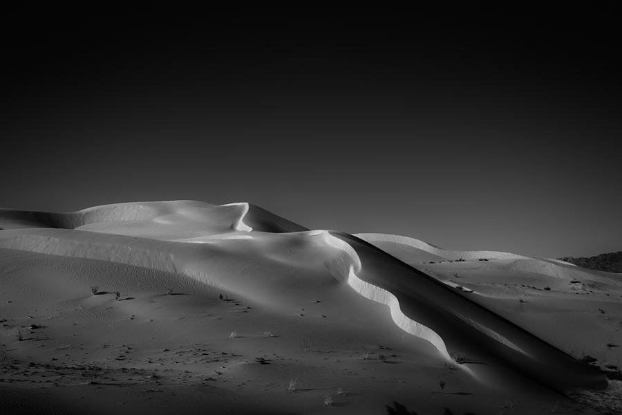Snake Dune Photograph