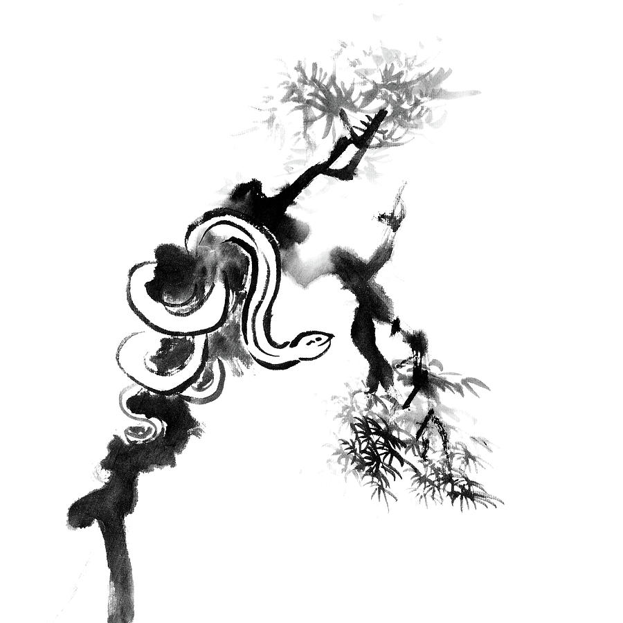 Snake On Tree Digital Art by Vii-photo