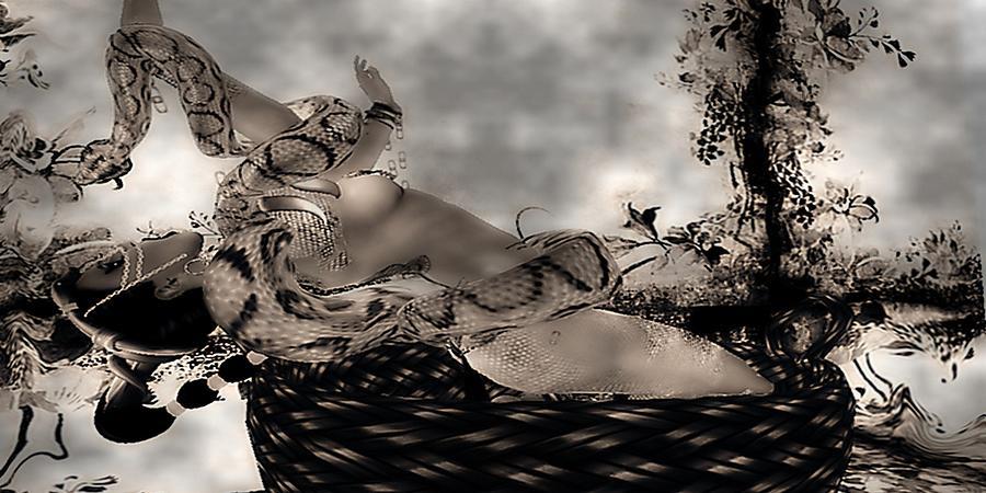 Snake Digital Art by Theda Tammas