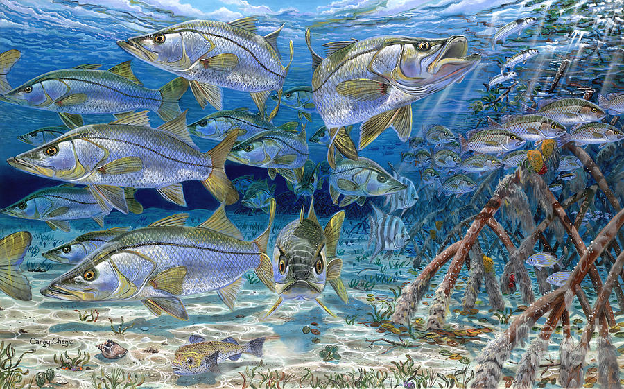 Snook Painting - Snook Cruise In006 by Carey Chen
