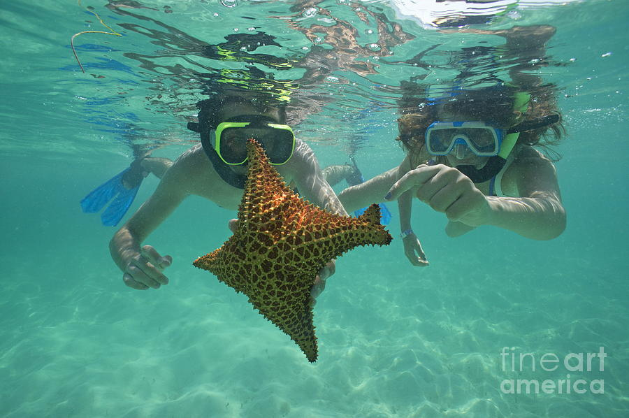 People Photograph - Snorkellers Holding A Four Legs Starfish by Sami Sarkis
