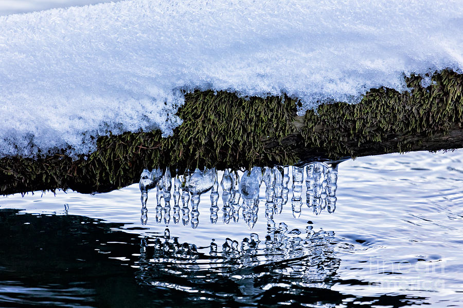 Snow And Icicles No. 3 Photograph