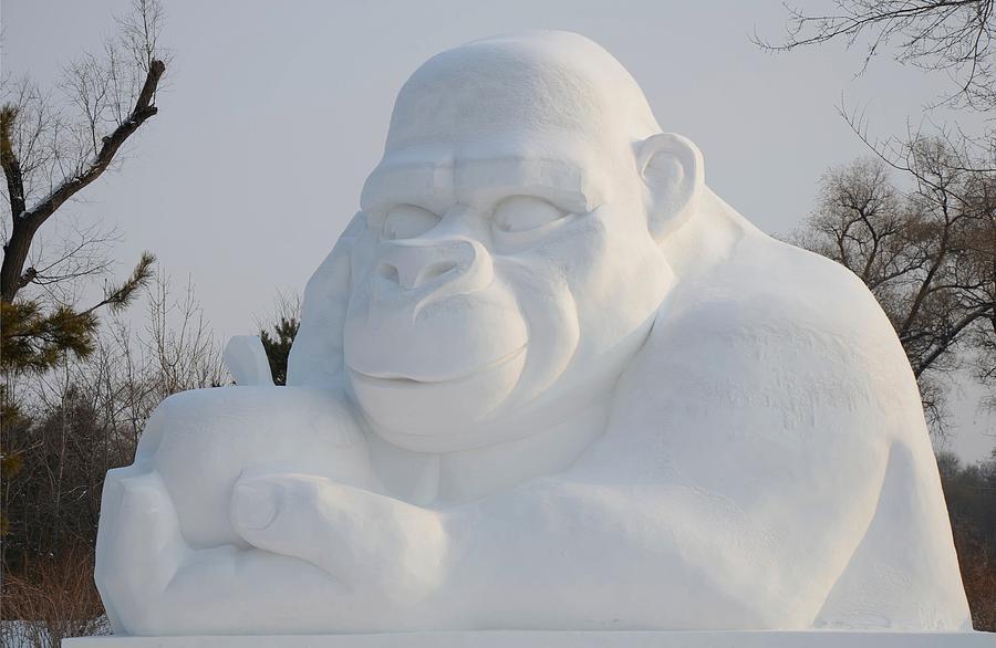 Ape Photograph - Snow Ape by Brett Geyer