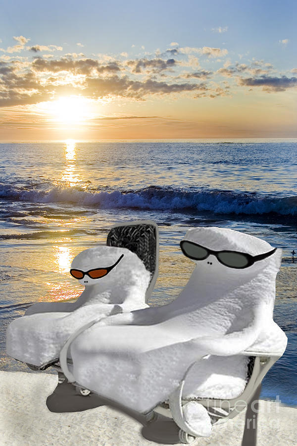 Snow Bird Vacation by Gary Keesler