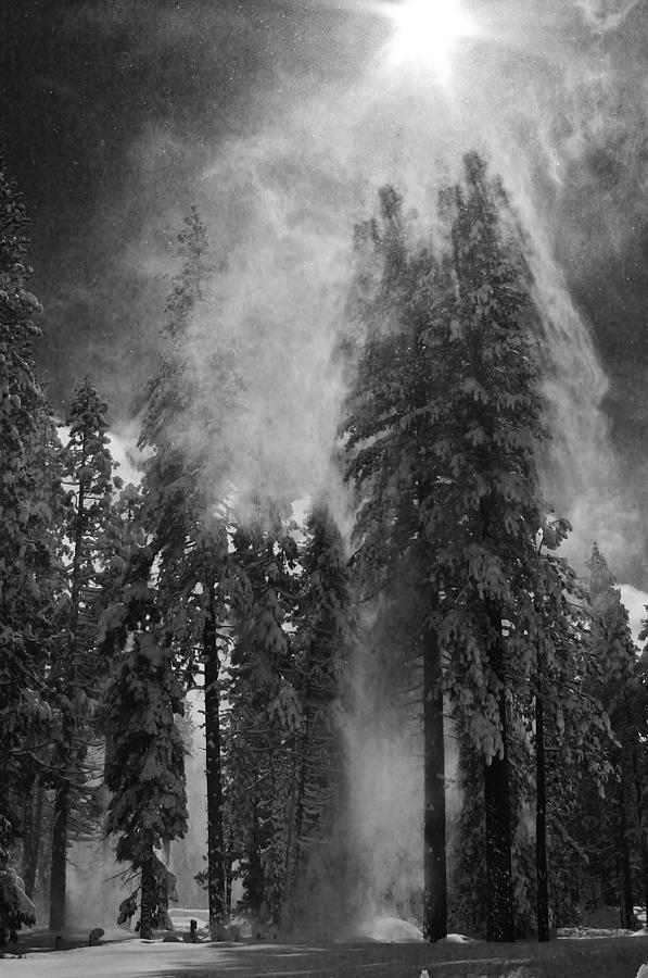 Snow Burst by Mark Robert Bein
