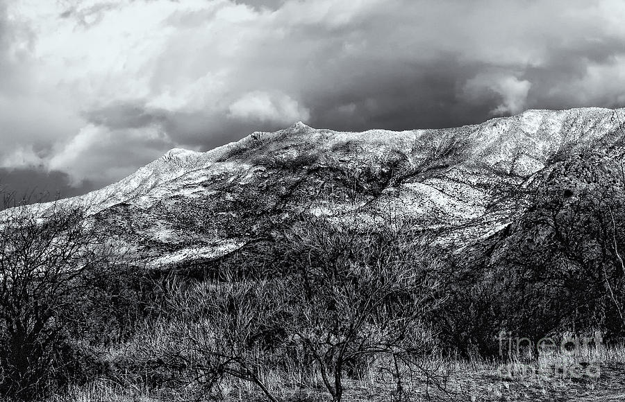 Snow Capped 45 Photograph