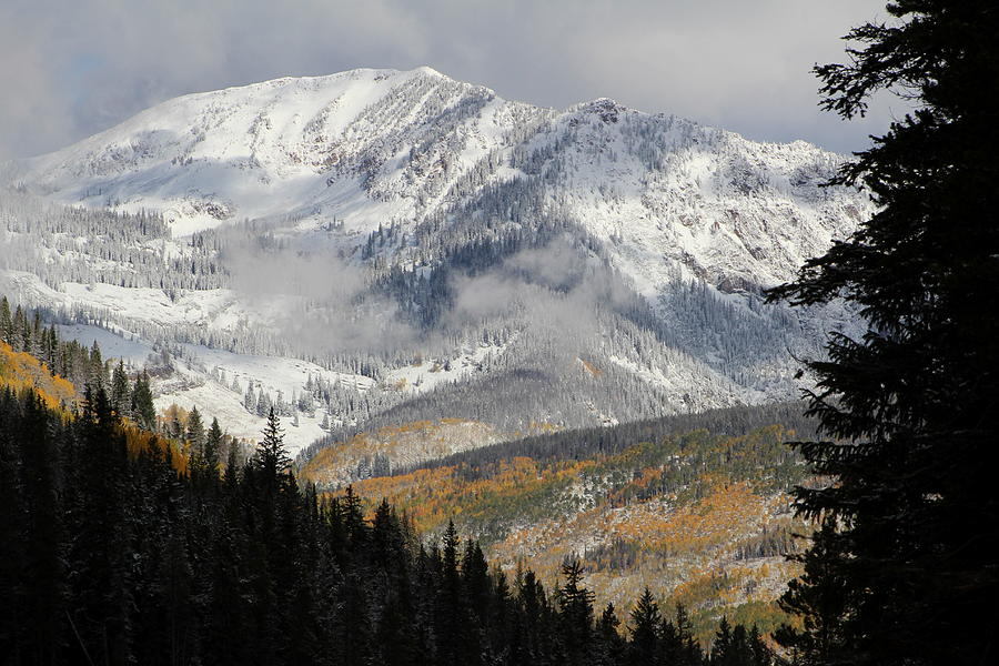 Vail Photograph - Snow Capped Beauty by Fiona Kennard