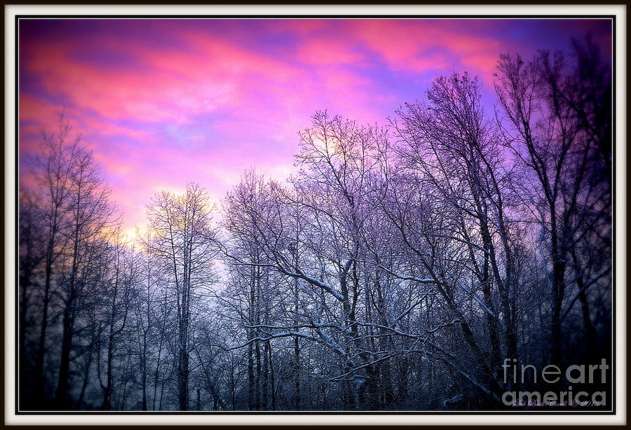 Snow Photograph - Snow Cone Skies by Deb Badt-Covell