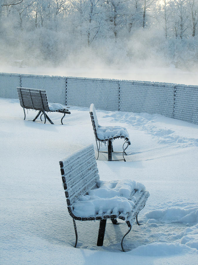 Snow Covered Benches With Fog Photograph by Francois Dion