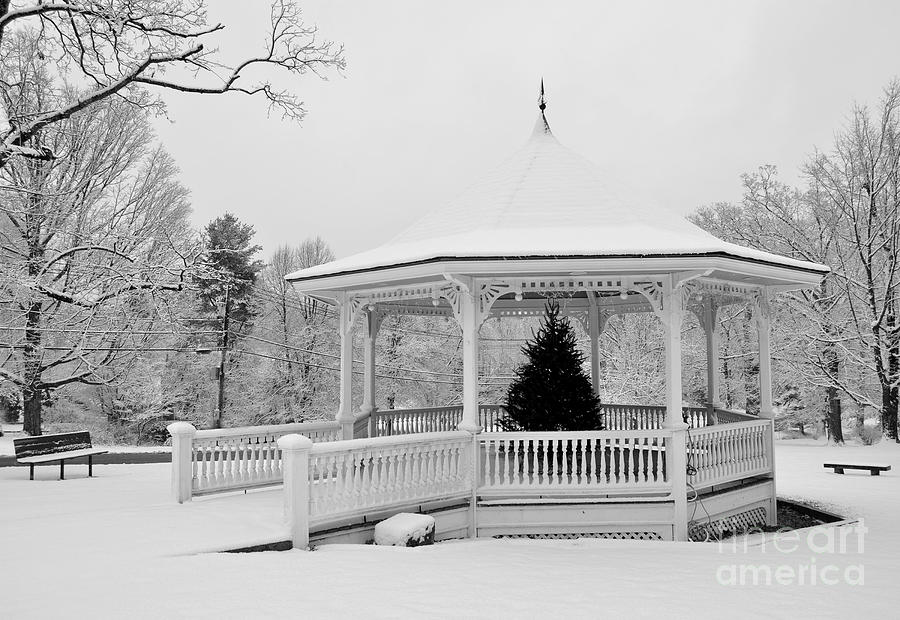 Snow Covered Gazebo in Winter by Staci Bigelow