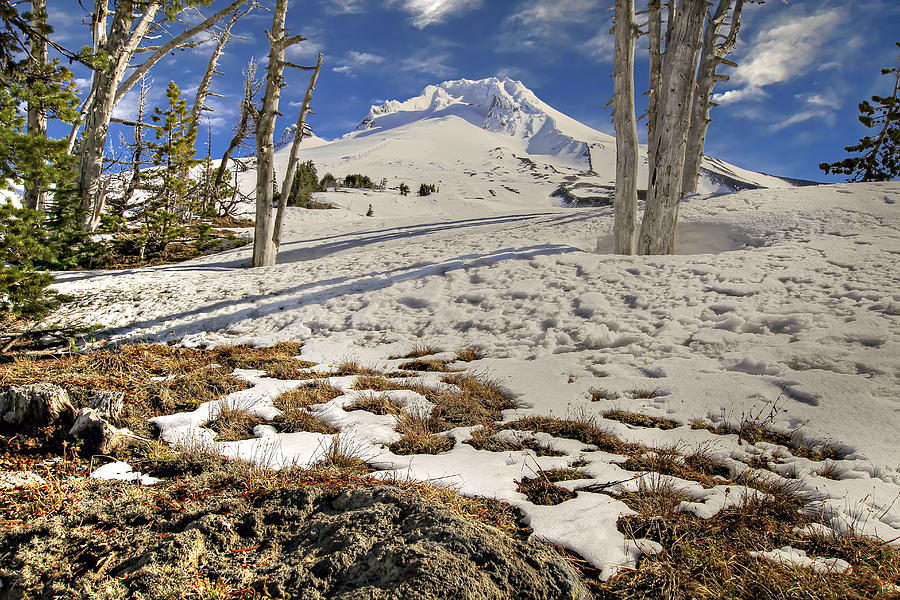 Mount Photograph - Snow Covered Mount Hood In Oregon by David Gn