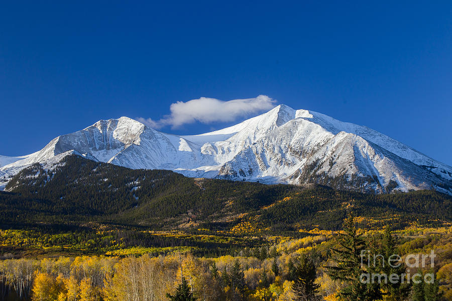 2014 Photograph - Snow Covered Mount Sopris With Golden Aspen Trees by Bridget Calip