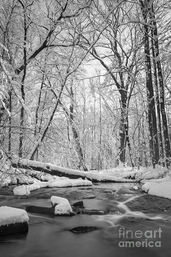Snowy Creek Photograph - Snow Creek Bw by Michael Ver Sprill