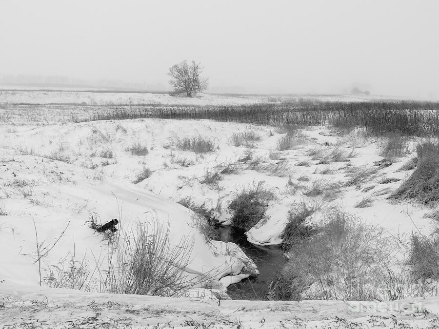 Snow Creek by Rural America Scenics
