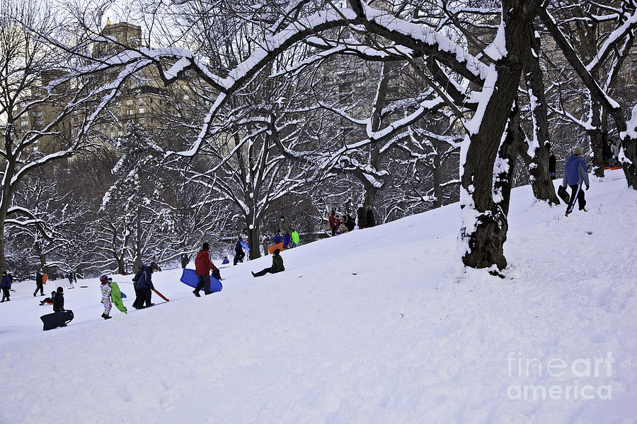 Snowboarding Photograph - Snow Day In The Park by Madeline Ellis