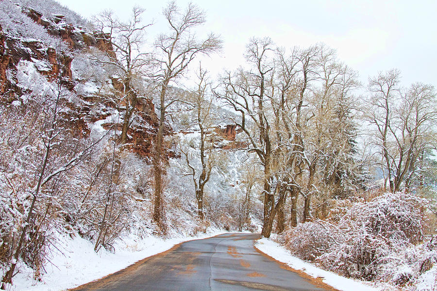 Snow Photograph - Snow Dusted Colorado Scenic Drive by James BO  Insogna